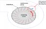 مقدمهای بر مدلسازی جریانها با قاب مرجع متحرک (Moving Reference Frame)